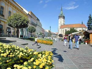 Jana Miková - Mesto Prešov 131b8299978